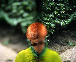 Vert et Roux