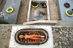 Maia au Cimetière de St-Tropez