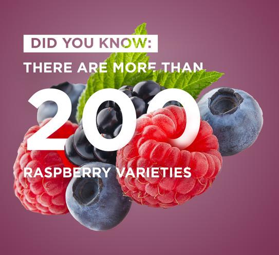ePod Fruit Range - Rasberry