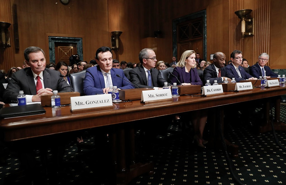 An image of top executives at the drug-pricing hearing on February 26, 2019. Taken from: