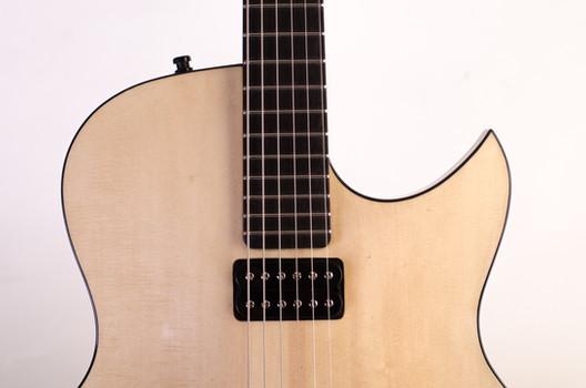 Tone Specific pickup - Semi Hollow