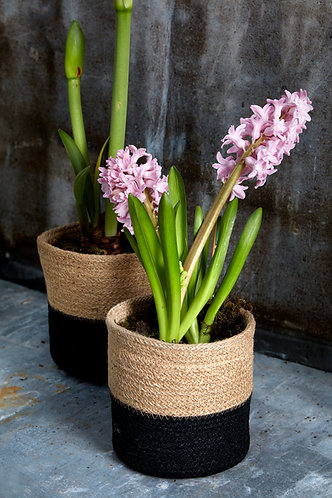 Jute Plant Pots with Black Stripe