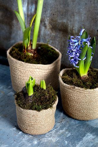 Set of 3 Woven Plant Pots