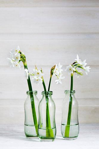 Single Stem Bottle Vase