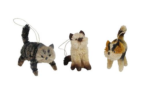 Bristle Cats