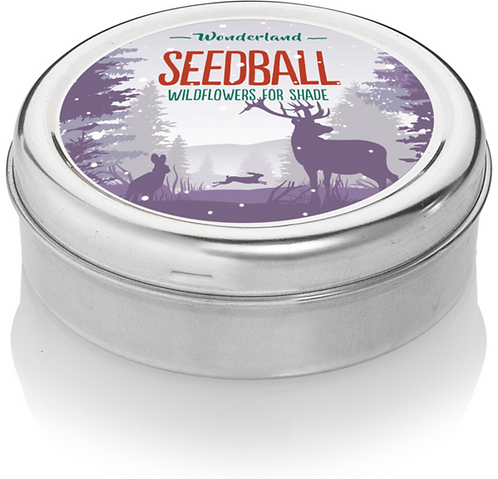 Seedball, wildflowers for shade