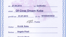 Of Cira's dream Kobe supera l'HZP con 180 punti!