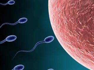 Malos hábitos que afectan a la fertilidad