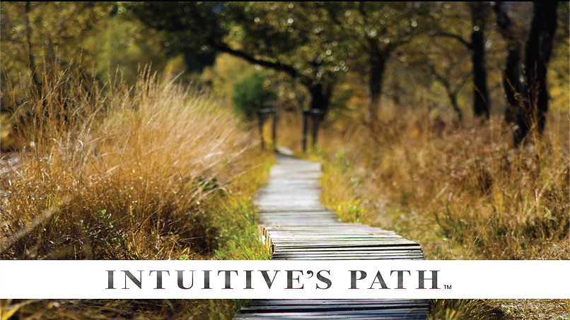 Intuitives Path Cover Page.png