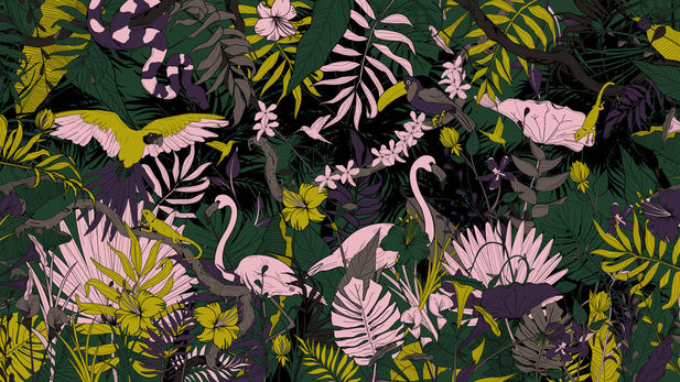 For Origins, we focused on the different flora and fauna that you normally see in a jungle. As the video zooms out, the viewer will realize that they are all in the same jungle.