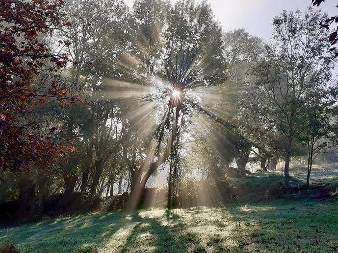 Lever de soleil, Vouvant