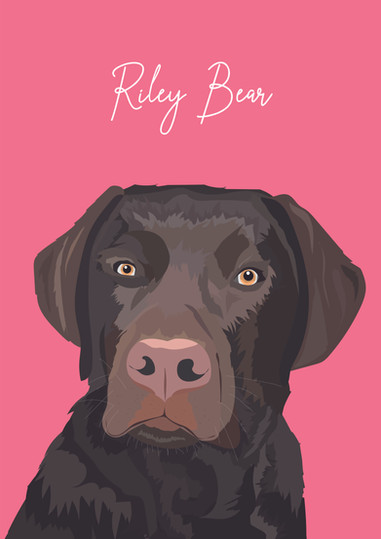 Riley_bear_2-02.jpg