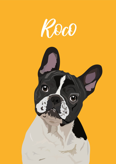 Roco-01.jpg