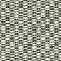 b011清流〈11銀鼠色〉.jpg