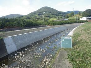 二級河川災害防止吊橋川護岸工事