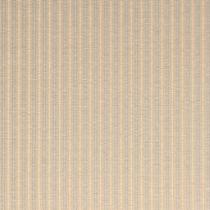 b029清流ストライプ02.jpg