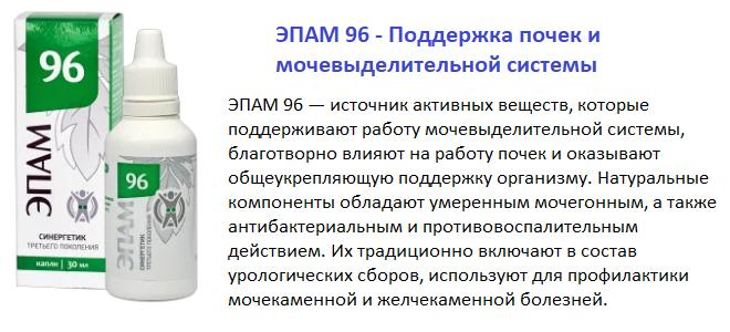 Эпам 96