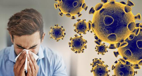 Pandemia de coronavirus COVID -19