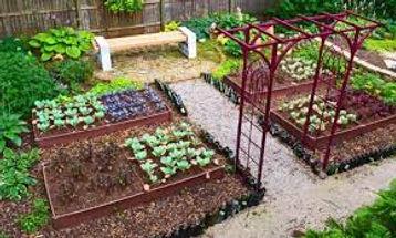 kitchen garden.jpeg