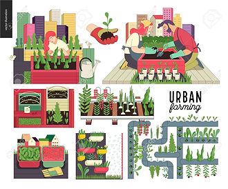 94100243-urban-farming-gardening-or-agri