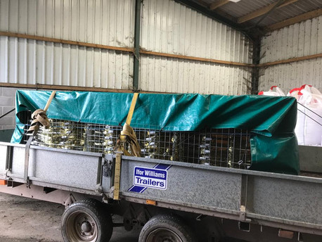 Polden Star loaded up