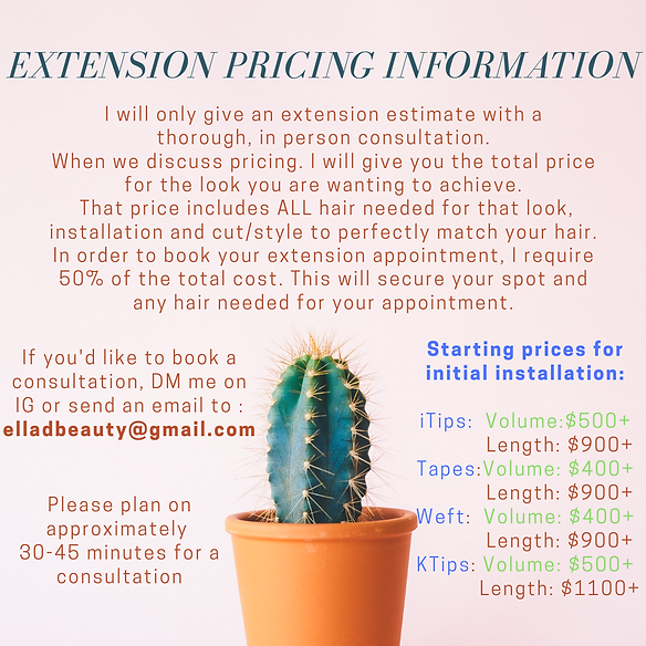 Copy of Extension pricing information-4.