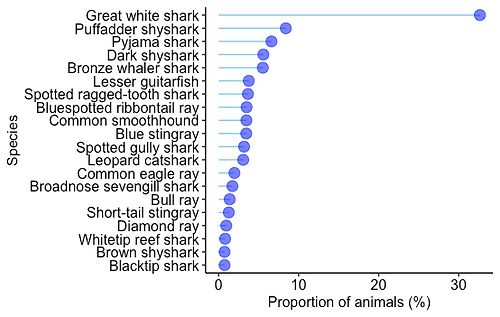 Animals proportion.png