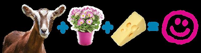 Spring-Garden-Center-Graphics.png