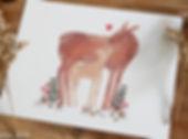 Deer Pair 2.jpg
