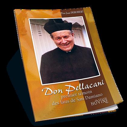 Don Pellacani, premier témoin des faits de San Damiano