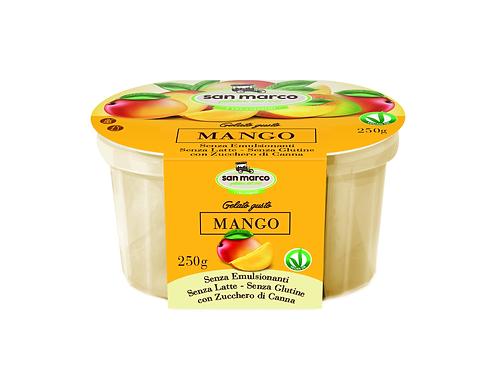 i Veganissimi mangonmakuinen gelato