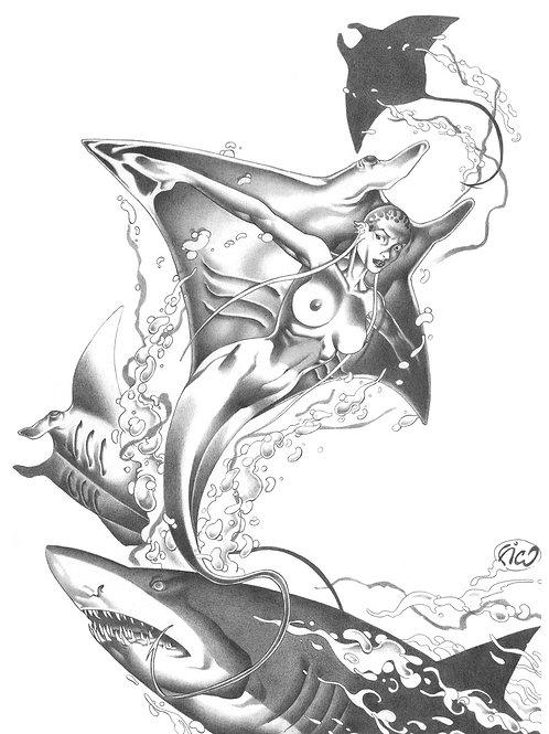 Mermaids 2 - Fico 1