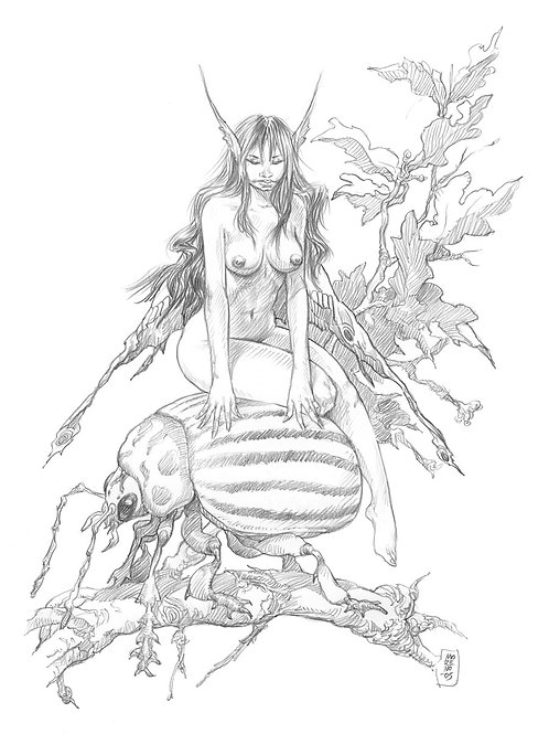 Fairy Tails 1 - Moreno 2