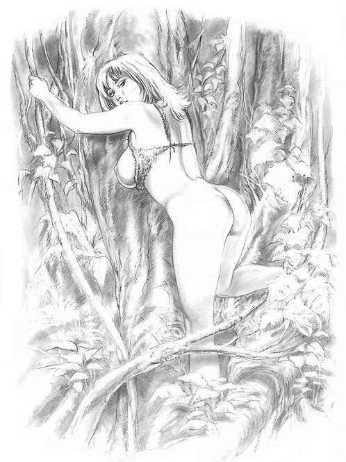 Jungle Tails 3 - Torres 3
