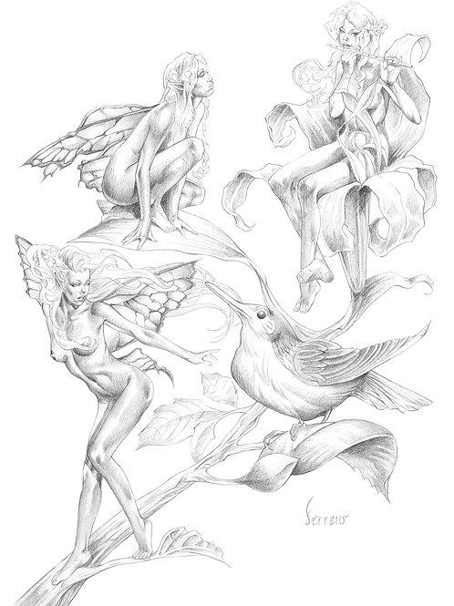 Fairy Tails 2 - Ferrero 1
