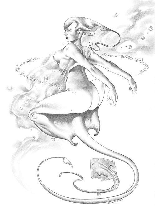 Mermaids 1 - Giorello 2