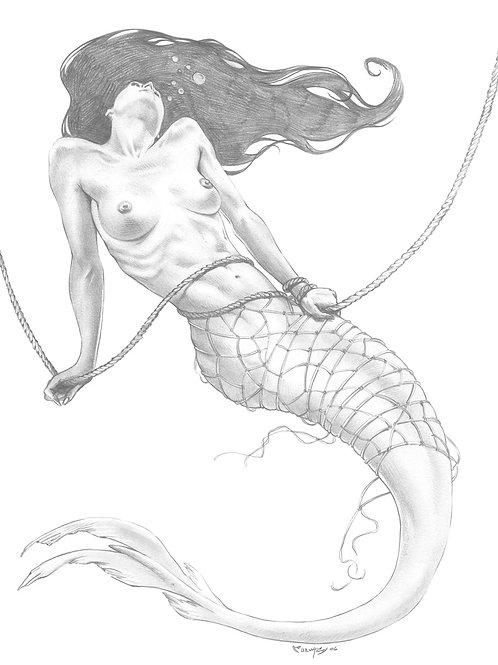 Mermaids 4 - Cuevas 1