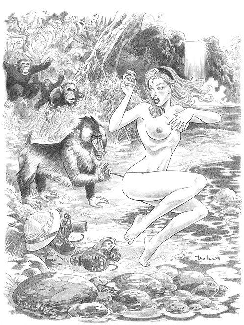 Jungle Tails 4 - Guida 1