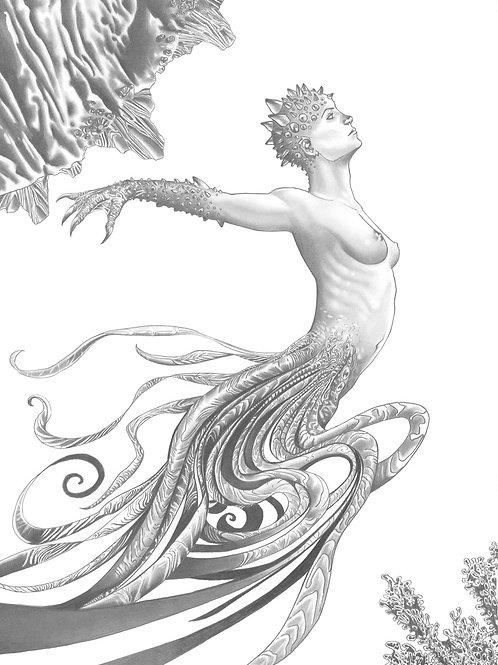 Mermaids 4 - Buci 1