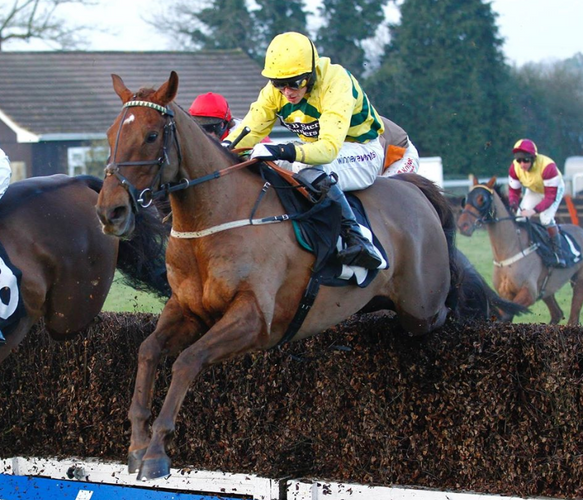 Itoldyou at Plumpton