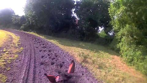 Take a rode around our circular gallop