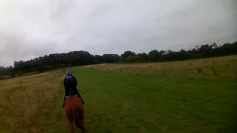 Take a ride up one of our hill gallops