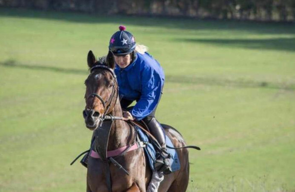 Training at the home gallops