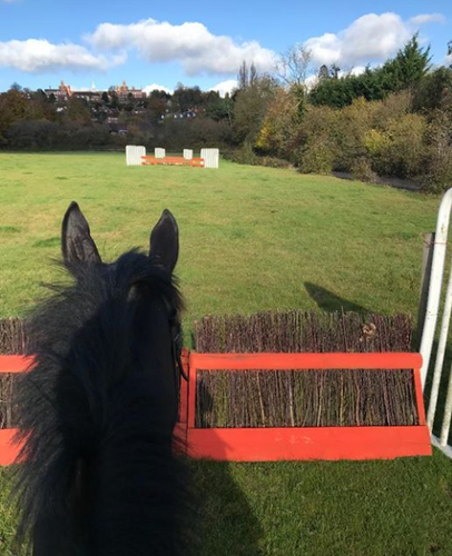 Our Jumps Field