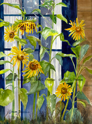 Sunflowers Outside Window
