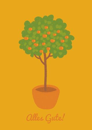 Orangenbaum_gelb.jpg