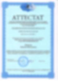 Аттестат Поддуева 001.jpg