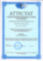 аттестат Какорина 001.jpg