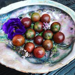 Balck Cherry Heirloom Beauties