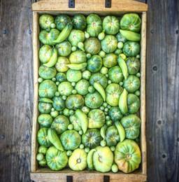 Green Tomatoes.jpg